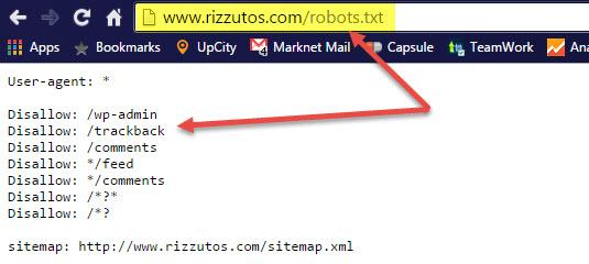 robots.txt site